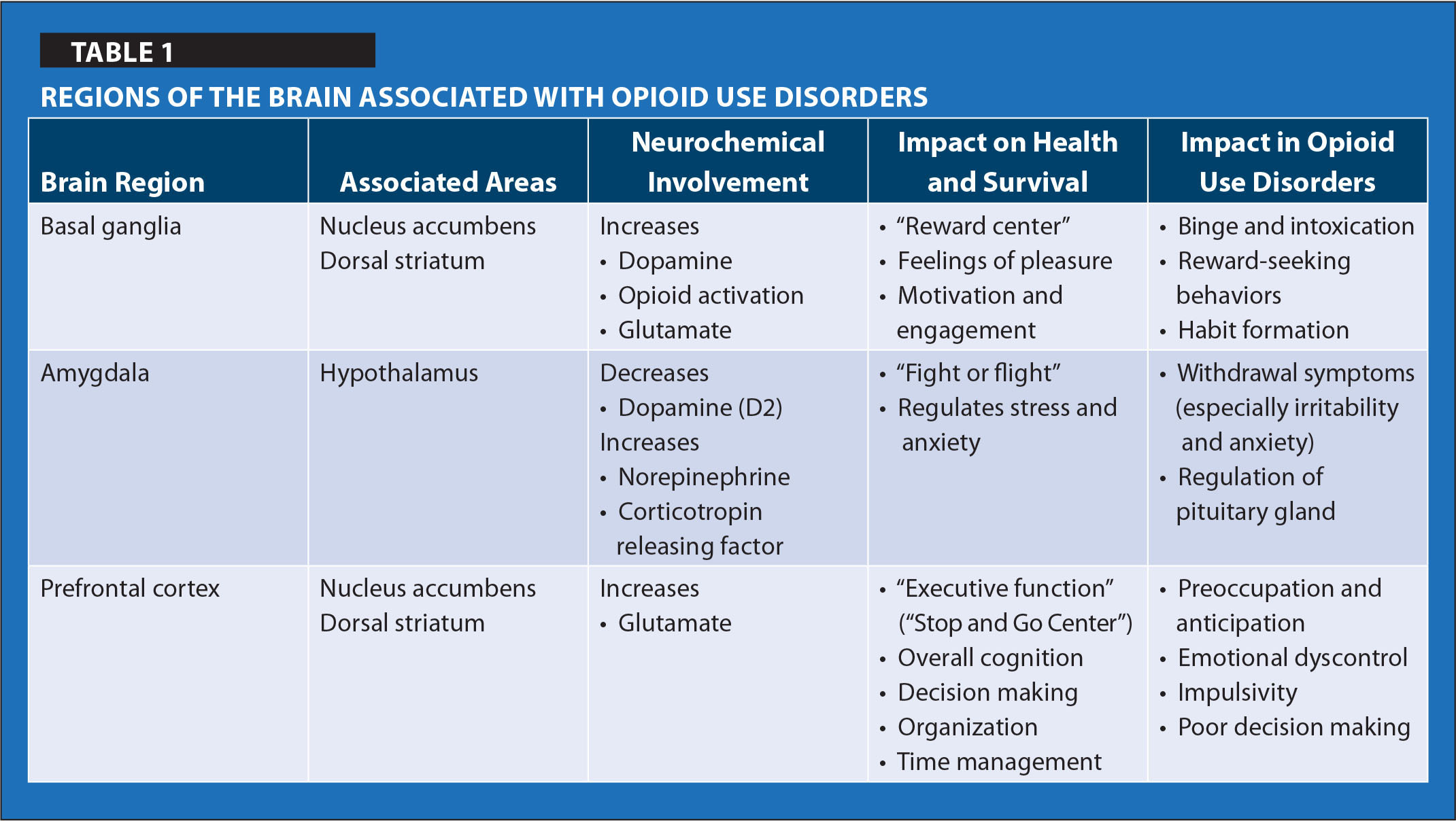 Regions of the Brain Associated with Opioid use Disorders