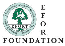 Boost your career with EFORT Foundation fellowships