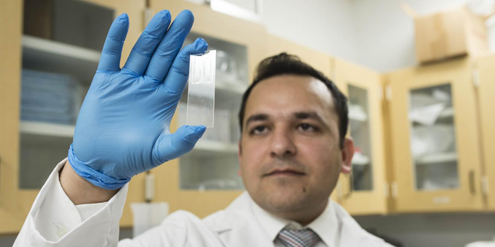 Researchers develop portable Zika test